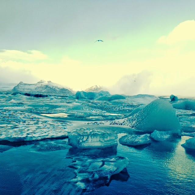 Islande 2015 - 13 - Jokulsarlon 075