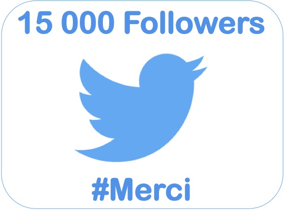 15000-followers-twitter-sebastien-bourguignon